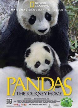 دانلود فیلم Pandas: The Journey Home 2014