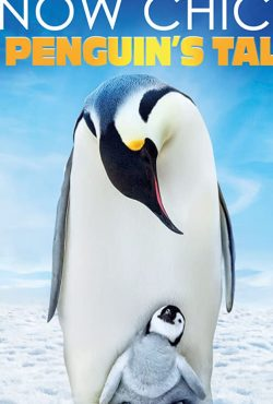 دانلود فیلم Snow Chick: A Penguin's Tale 2015